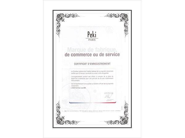 佩琪-电子商务服务证书